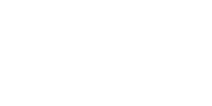 logo bureau veritas solution - blanc