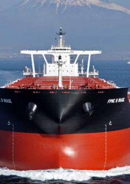 Bulk Carriers, Dry Cargo Ship - Bureau Veritas Marine ship Classification