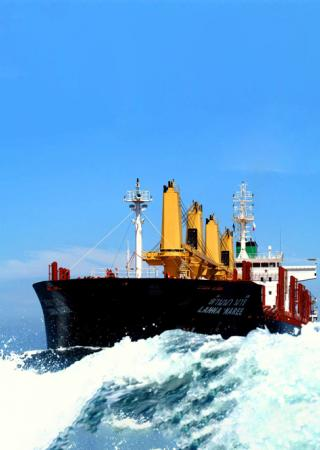 Bulk Carriers - Eco Bulker & Super Eco bulker Expertise