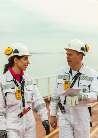 Bureau Veritas extensive network of surveyors on board